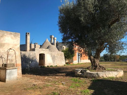 Rustico e Casale / Masseria In Vendita