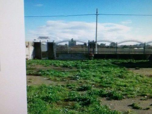 Terreno / Non edificabile / agricolo In Affitto