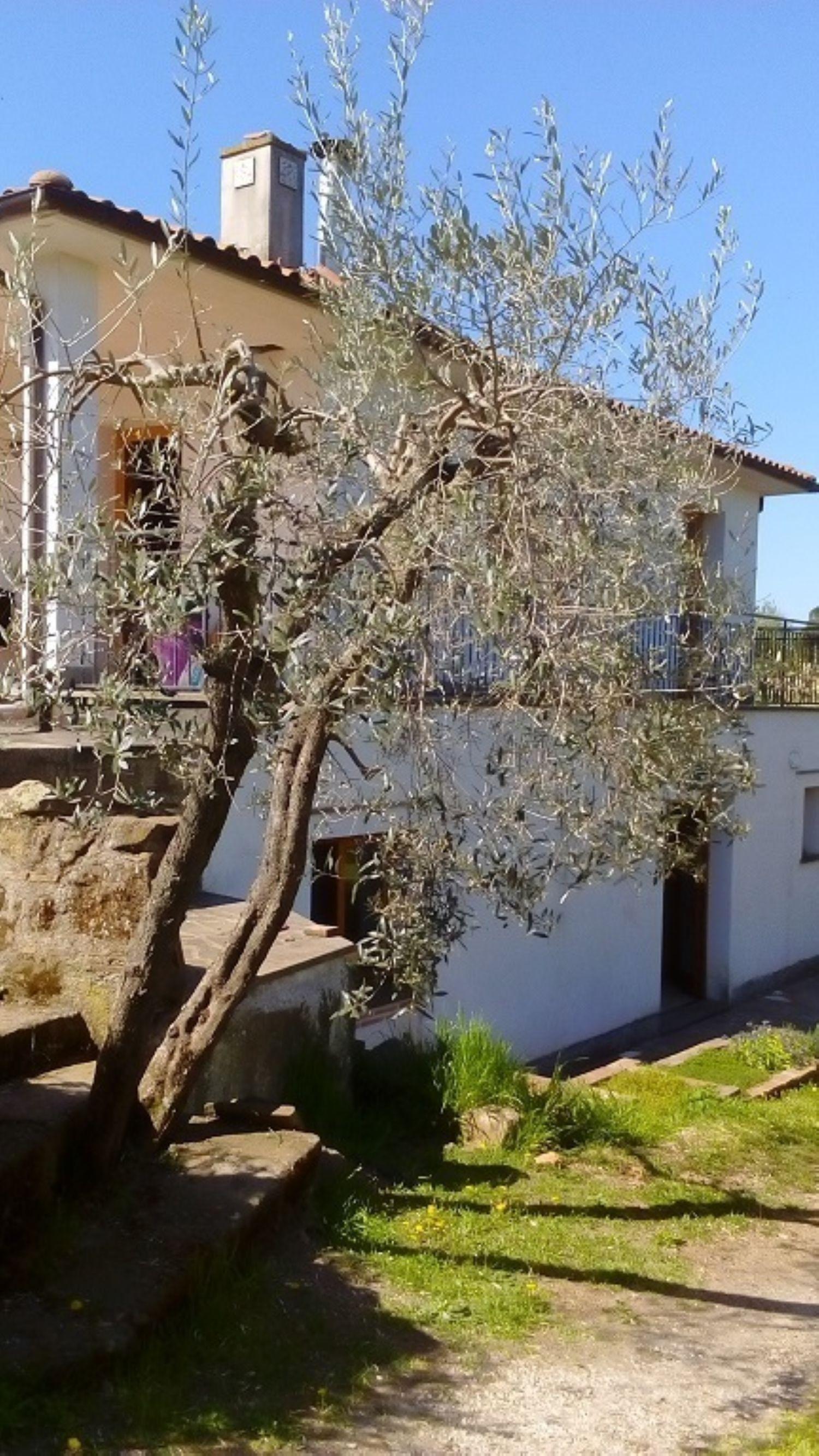 Villa Bifamiliare in vendita a Vitorchiano, 4 locali, prezzo € 220.000 | Cambio Casa.it