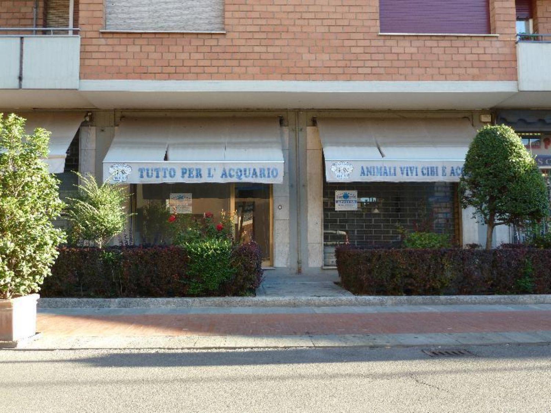 Immobile Commerciale in affitto a San Giovanni in Persiceto, 9999 locali, prezzo € 700   CambioCasa.it