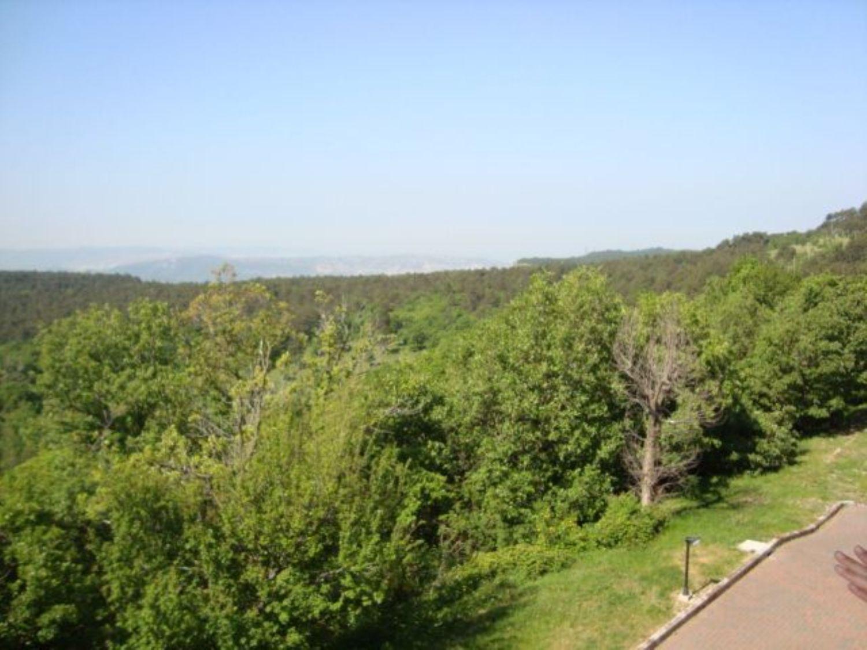 Appartamento in vendita a San Dorligo della Valle, 2 locali, prezzo € 129.000 | CambioCasa.it