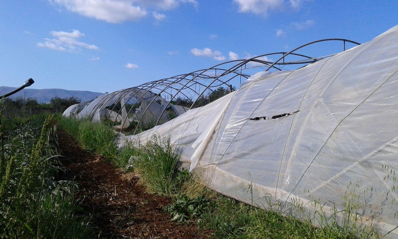 Terreno in Vendita a Velletri