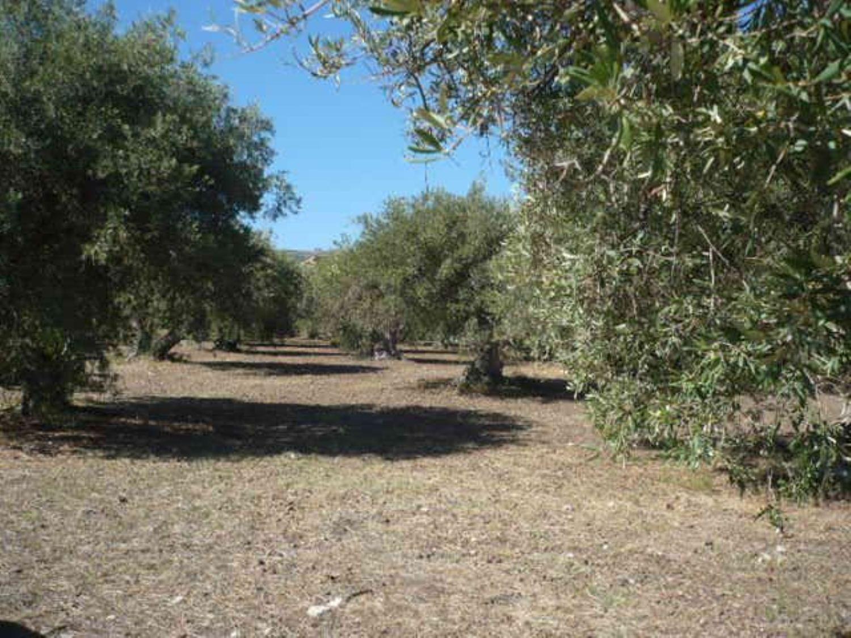 Terreno in vendita a Termini Imerese, 9999 locali, prezzo € 65.000 | CambioCasa.it