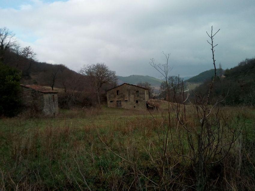 Proprietà rustica in vendita in località Località Località Larciano ...