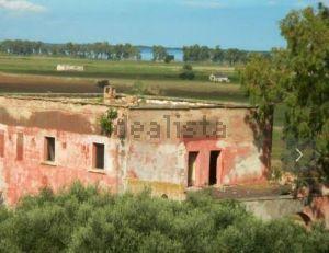 Proprietà rustica in strada Provinciale 40 s.c.n