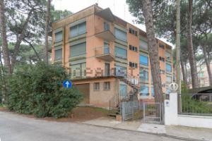 Appartamento in via DEI PINI s.c.n