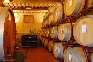 Rustico con cantina vinicola a Siena