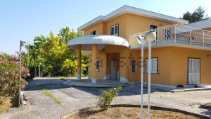 Villa in contrada pino, 1