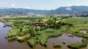 Villa in Massaciuccoli