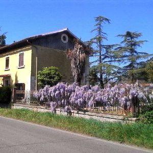 Villa a Canino