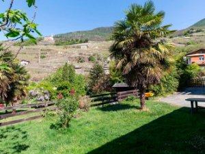 Case con più di 120 mq in Valtellina di Sondrio, Sondrio — idealista