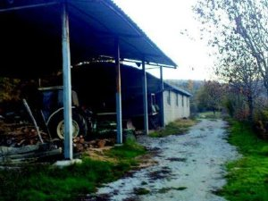 Rustici e casali economici a Firenze provincia — idealista